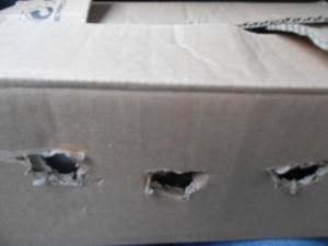 Günü bu kutu içinde geçirdi