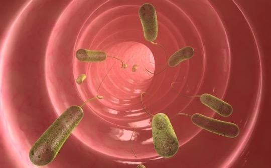 Bağırsak parazitleri çocuk gelişimini etkiliyor